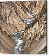 Yellowstone National Park Montana  3 Panel Composite Acrylic Print