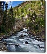 Yellowstone National Park Waterfall Acrylic Print