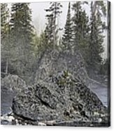 Yellowstone - The Rock Tree Acrylic Print