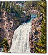 Yellowstone Upper Falls Acrylic Print