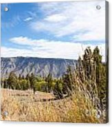 Yellowstone View Acrylic Print by Cindy Singleton
