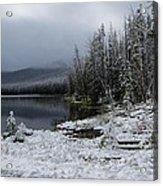 Yellowstone Winter Acrylic Print by Diane Mitchell