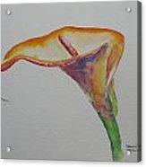 Yemanya Acrylic Print