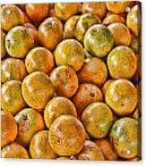 Yep Oranges Acrylic Print