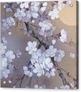Yoi Crop Acrylic Print
