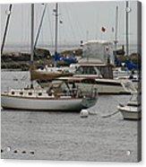 York Harbor Maine Acrylic Print