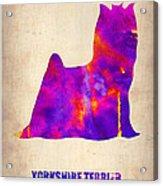 Yorkshire Terrier Poster Acrylic Print by Naxart Studio