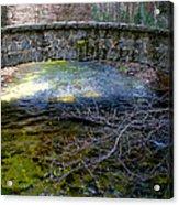 Yosemite Bridge Acrylic Print