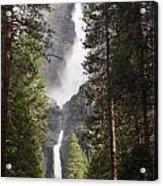 Yosemite Falls 2013 Acrylic Print