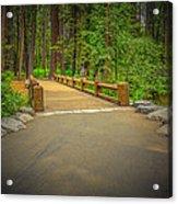 Yosemite Falls Trail Acrylic Print