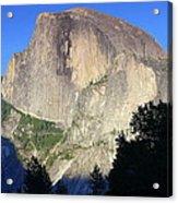 Yosemite Half Dome With Cottonwood Trees Acrylic Print