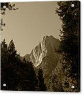 Yosemite Park Sepia Acrylic Print