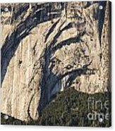 Yosemite Rock Detail Acrylic Print