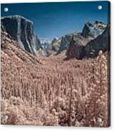 Yosemite Vally In Infrared Acrylic Print