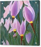 Yosemite Wildflowers Acrylic Print
