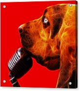 You Ain't Nothing But A Hound Dog - Red - Electric Acrylic Print