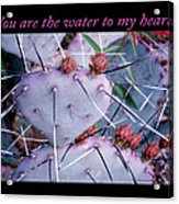 You Are The Water For My Heart 7 Acrylic Print
