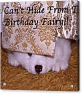 You Can't Hide Birthday Card Acrylic Print