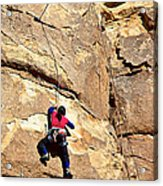 Young Climber In Joshua Tree Np-ca- Acrylic Print
