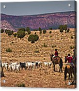 Young Goat Herders Acrylic Print by Priscilla Burgers