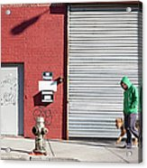 Young Man Walks Dog Acrylic Print