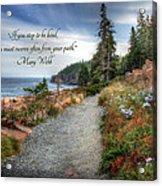 Your Path Acrylic Print