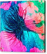 Yucca Abstract Pink Blue Green Acrylic Print