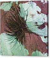 Yucca Abstract Sage And Mauve Acrylic Print