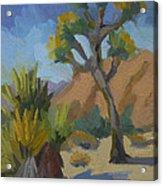 Yucca And Joshua Acrylic Print