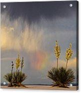 Yuccas, Rainbow And Virga Acrylic Print