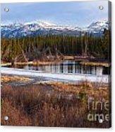 Yukon Taiga Wetland Marsh Spring Thaw Canada Acrylic Print