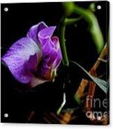 Yuneah's Flower Acrylic Print