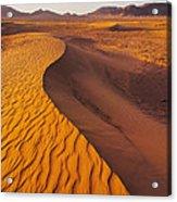 Zagora Desert In Morocco Acrylic Print