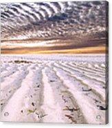 Zanzibar Low Tide 05 Acrylic Print