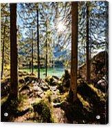 Zauberwald In Autumn Acrylic Print