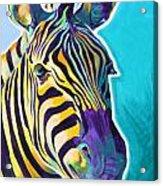 Zebra - Sunrise Acrylic Print