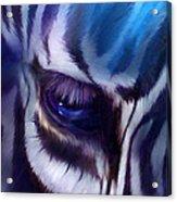 Zebra Blue Acrylic Print