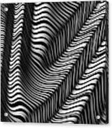 Zebra Folds Acrylic Print