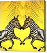 Zebra Heart Acrylic Print