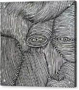 Zebra Line Acrylic Print