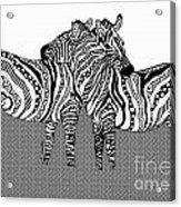 Zebra Love 10 Acrylic Print