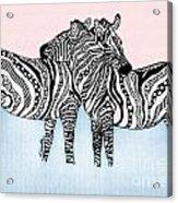 Zebra Love 21 Acrylic Print