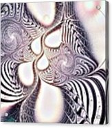 Zebra Phantasm Acrylic Print