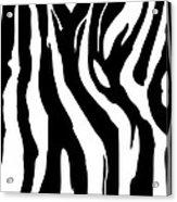 Zebra Print 001 Acrylic Print by Kenneth Feliciano