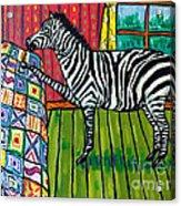 Zebra Quilting Acrylic Print by Jay  Schmetz