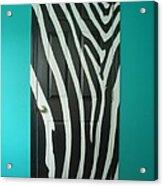 Zebra Stripe Mural - Door Number 1 Acrylic Print