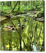 Zen In The Forest Acrylic Print