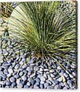 Zen Landscape Acrylic Print