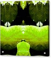 Zen Leaves 2 Acrylic Print