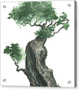 Zen Tree 1000 Acrylic Print